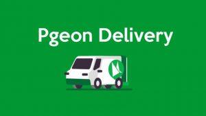 Pgeon 海运小包