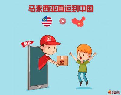 马来西亚直运到中国
